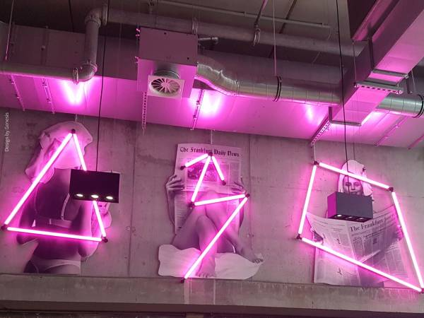 The lightning system LIGEO decorates the wall in the Moxy Hotel Frankfurt in striking pink accent lightning.